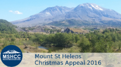 Christmas_appeal_banner_280x158